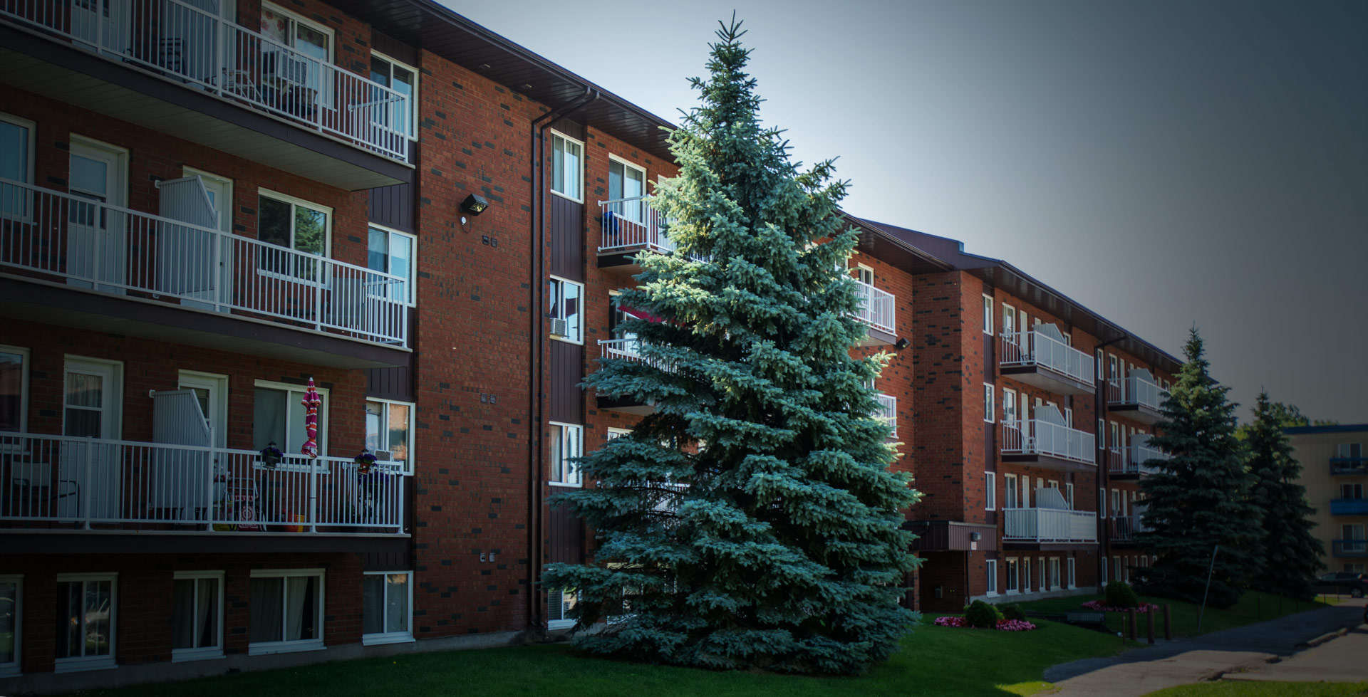 For Rent Looking An Apartment More Than 1000 Apartments In Gatineau